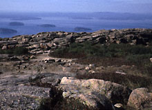 an intrusive igneous rock pinkish tan exposures of the Cadillac granite on the top of Mt Cadillac, Mt Desert Island, Maine.